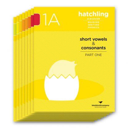 hatchling volume 1 workbooks