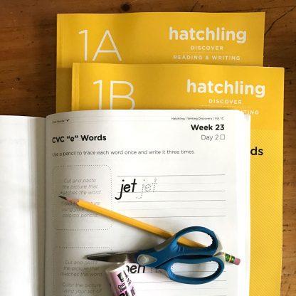 hatchling guides