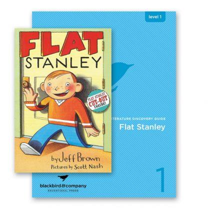 flat stanley bundle