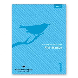 flat stanley workbook