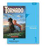 tornado bundle
