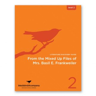 Mixed Up Files study guide